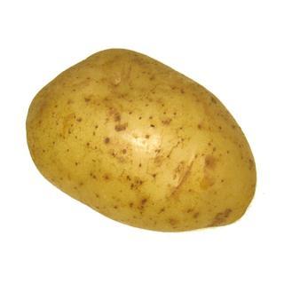 Frühkartoffeln,Colomba vfk.