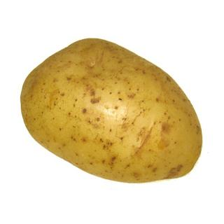 Frühkartoffeln, Nicola fk.