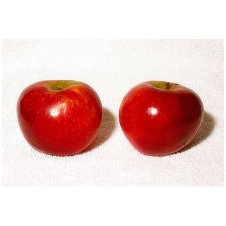 Äpfel HANA