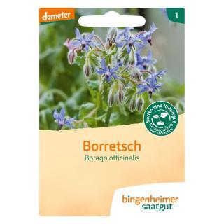 Borretsch