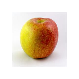 Äpfel Roter Elstar